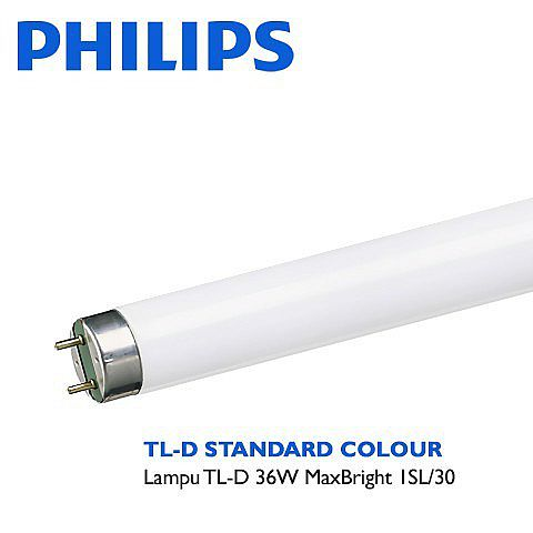 PHILIPS TL-D MaxBright 36W 8000K 1200mm